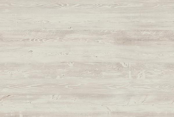 <b>364S</b>&nbsp;  Himalayan pine